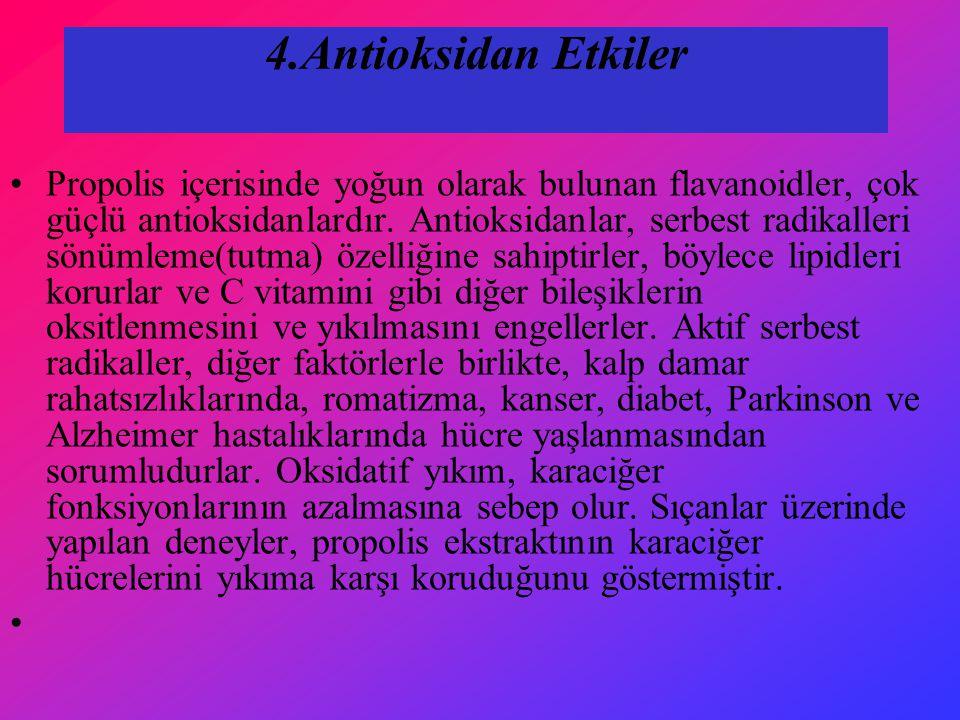 4.Antioksidan Etkiler