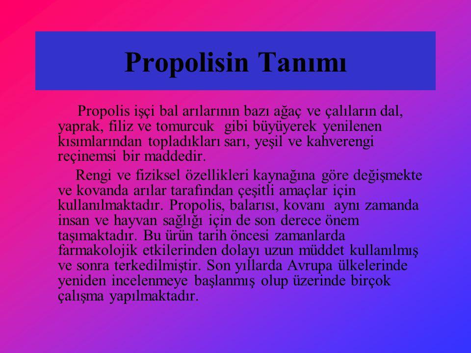 Propolisin Tanımı