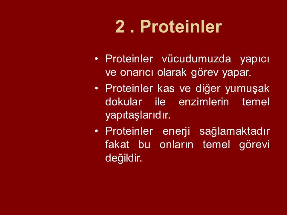 2 . Proteinler Proteinler vücudumuzda yapıcı ve onarıcı olarak görev yapar.