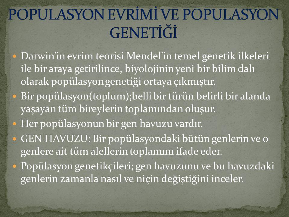 POPULASYON EVRİMİ VE POPULASYON GENETİĞİ