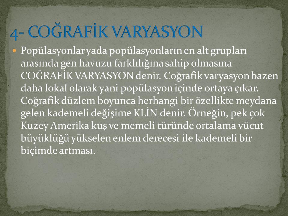 4- COĞRAFİK VARYASYON