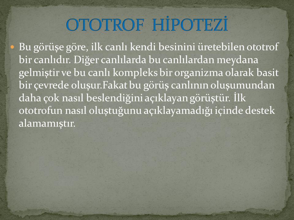 OTOTROF HİPOTEZİ