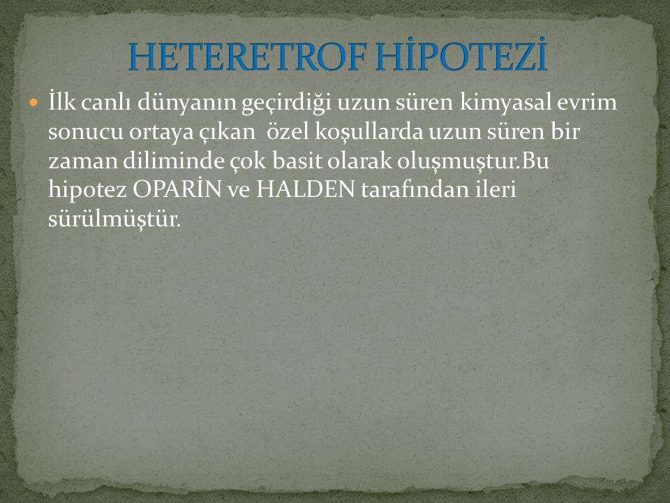 HETERETROF HİPOTEZİ