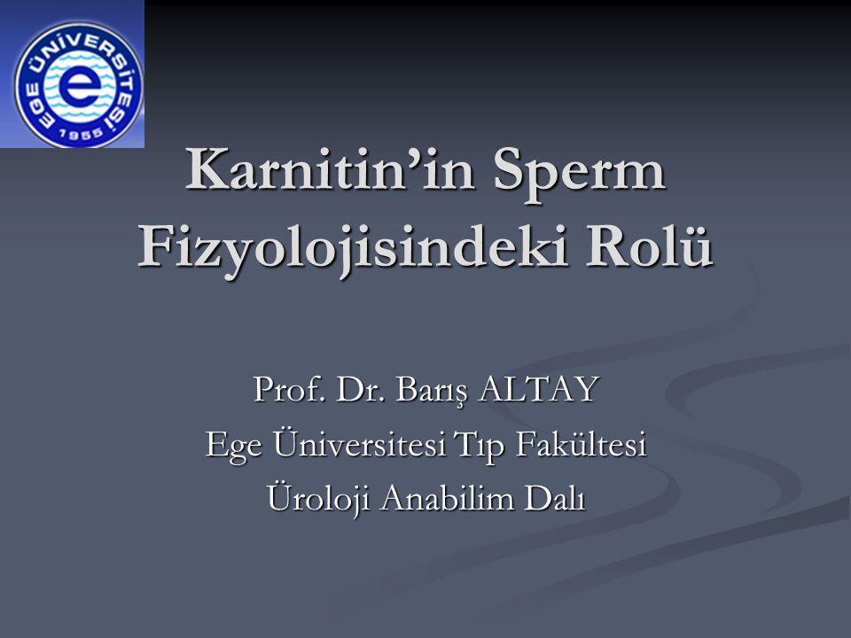 Karnitin'in Sperm Fizyolojisindeki Rolü