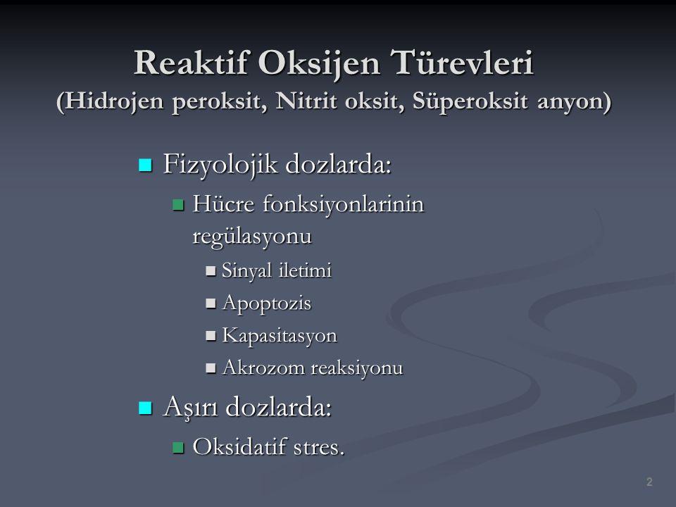 Reaktif Oksijen Türevleri (Hidrojen peroksit, Nitrit oksit, Süperoksit anyon)