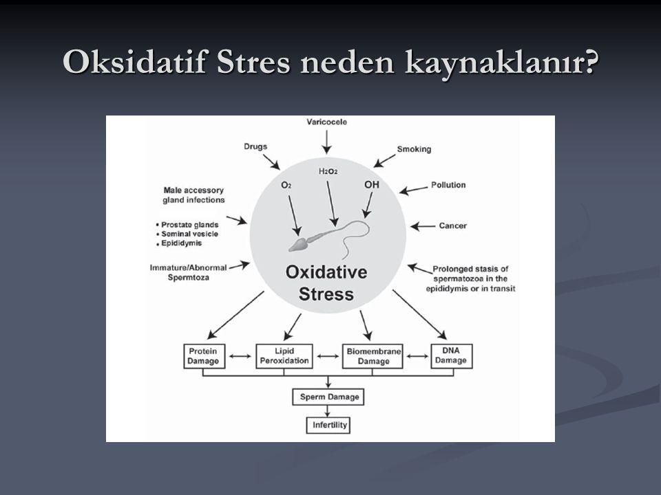 Oksidatif Stres neden kaynaklanır