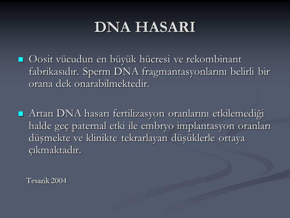 DNA HASARI Oosit vücudun en büyük hücresi ve rekombinant fabrikasıdır. Sperm DNA fragmantasyonlarını belirli bir orana dek onarabilmektedir.