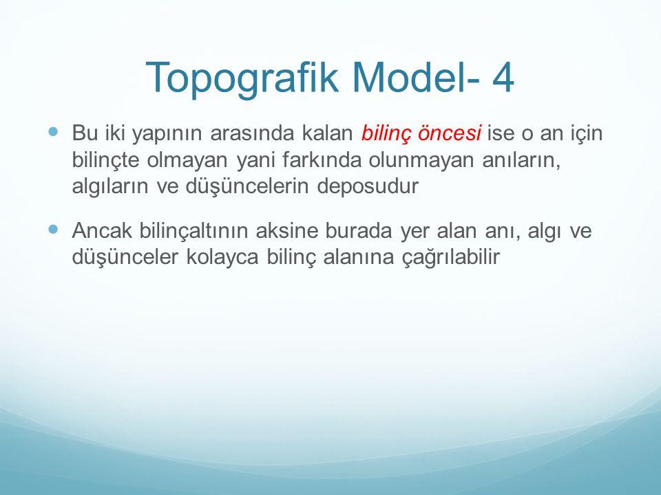 Topografik Model- 4