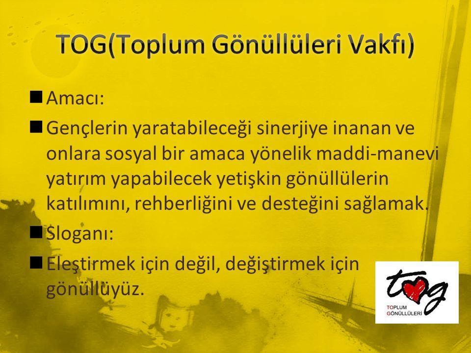 TOG(Toplum Gönüllüleri Vakfı)