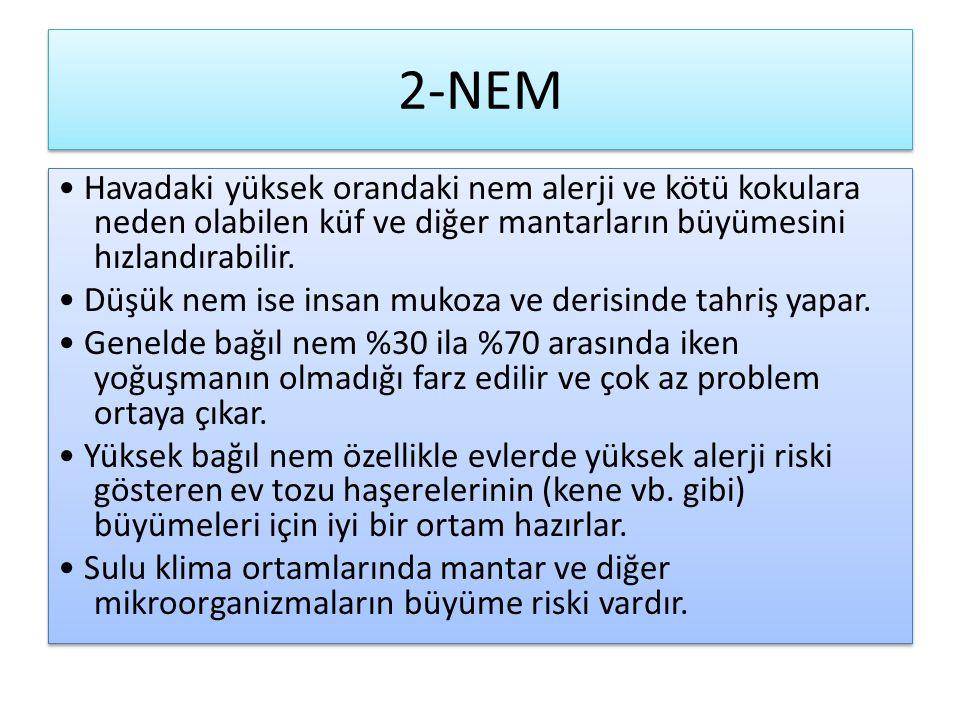 2-NEM