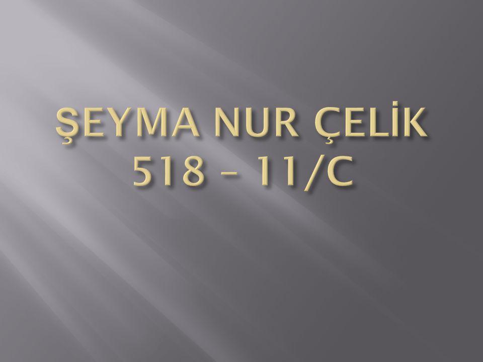 ŞEYMA NUR ÇELİK 518 – 11/C