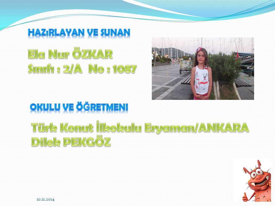 Türk Konut İlkokulu Eryaman/ANKARA Dilek PEKGÖZ