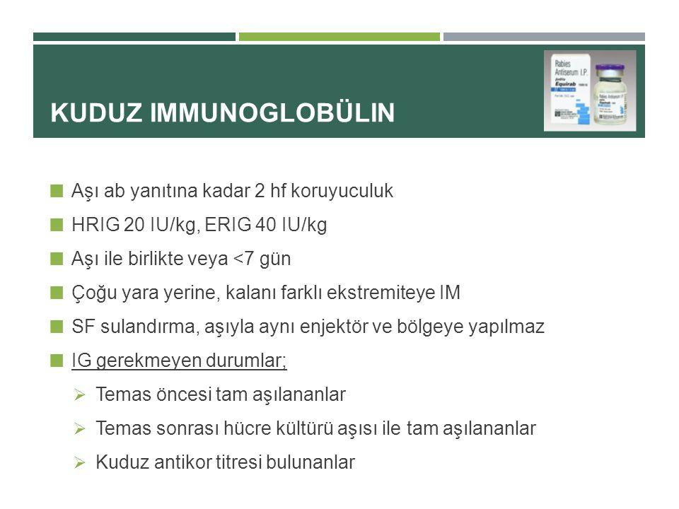 Kuduz immunoglobülin Aşı ab yanıtına kadar 2 hf koruyuculuk