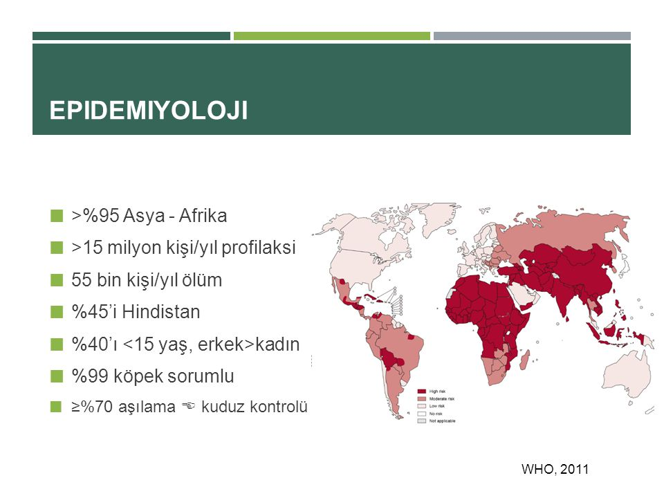 Epidemiyoloji >%95 Asya - Afrika >15 milyon kişi/yıl profilaksi