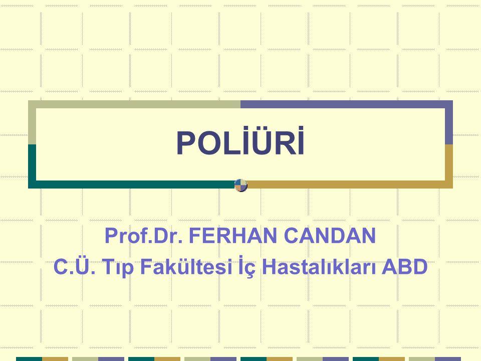 Prof.Dr. FERHAN CANDAN C.Ü. Tıp Fakültesi İç Hastalıkları ABD