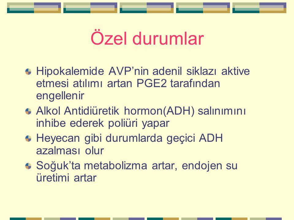 Özel durumlar Hipokalemide AVP'nin adenil siklazı aktive etmesi atılımı artan PGE2 tarafından engellenir.