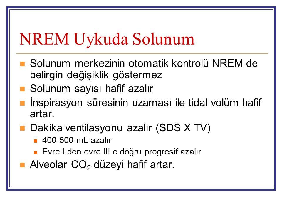 NREM Uykuda Solunum Solunum merkezinin otomatik kontrolü NREM de belirgin değişiklik göstermez. Solunum sayısı hafif azalır.
