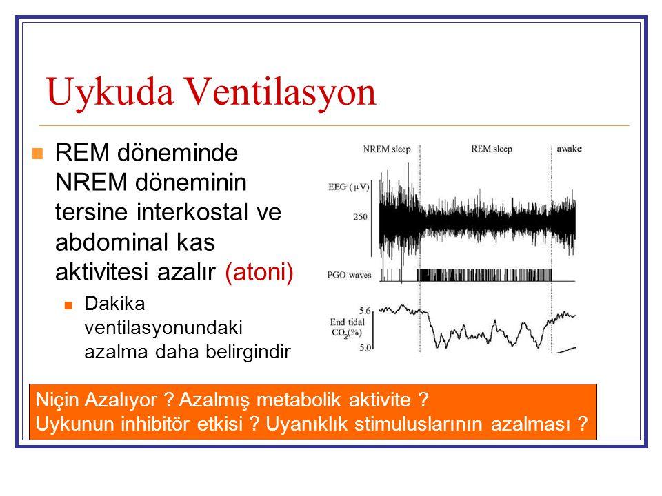 Uykuda Ventilasyon REM döneminde NREM döneminin tersine interkostal ve abdominal kas aktivitesi azalır (atoni)
