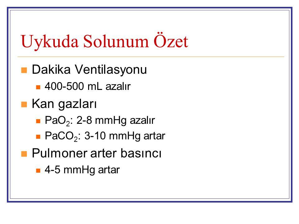 Uykuda Solunum Özet Dakika Ventilasyonu Kan gazları
