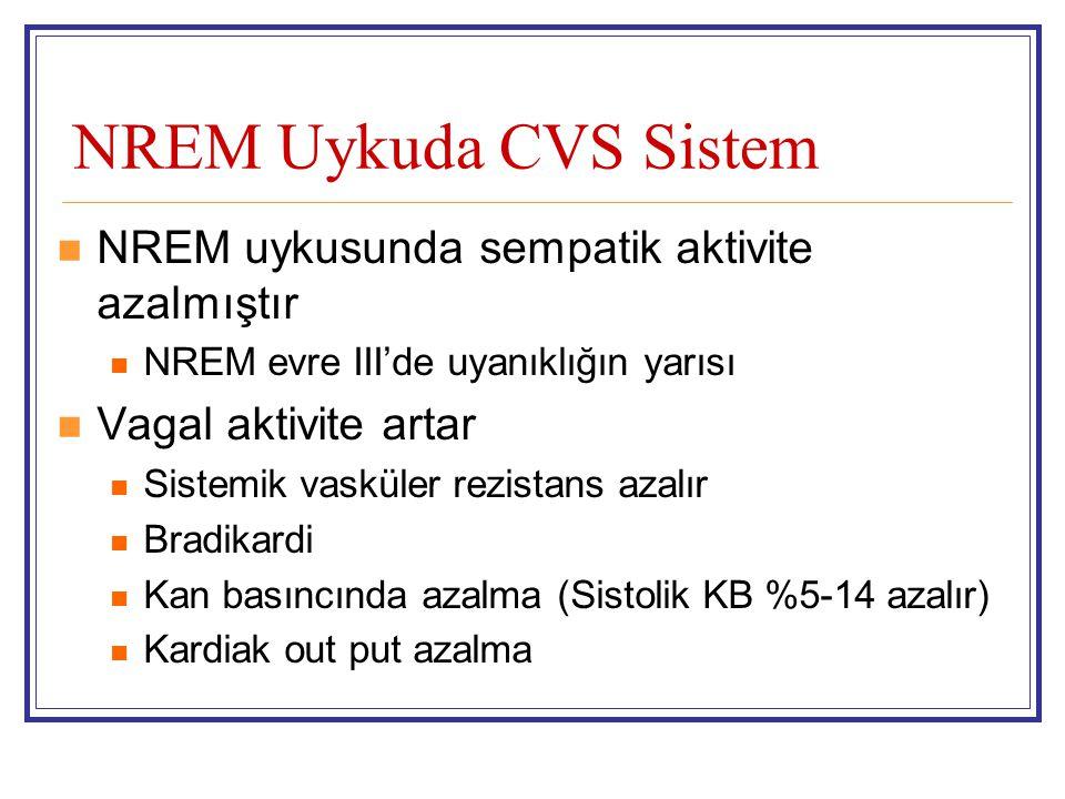 NREM Uykuda CVS Sistem NREM uykusunda sempatik aktivite azalmıştır