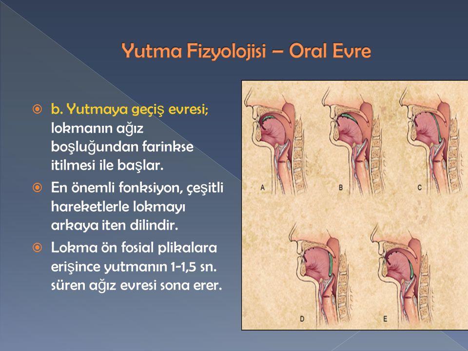 Yutma Fizyolojisi – Oral Evre