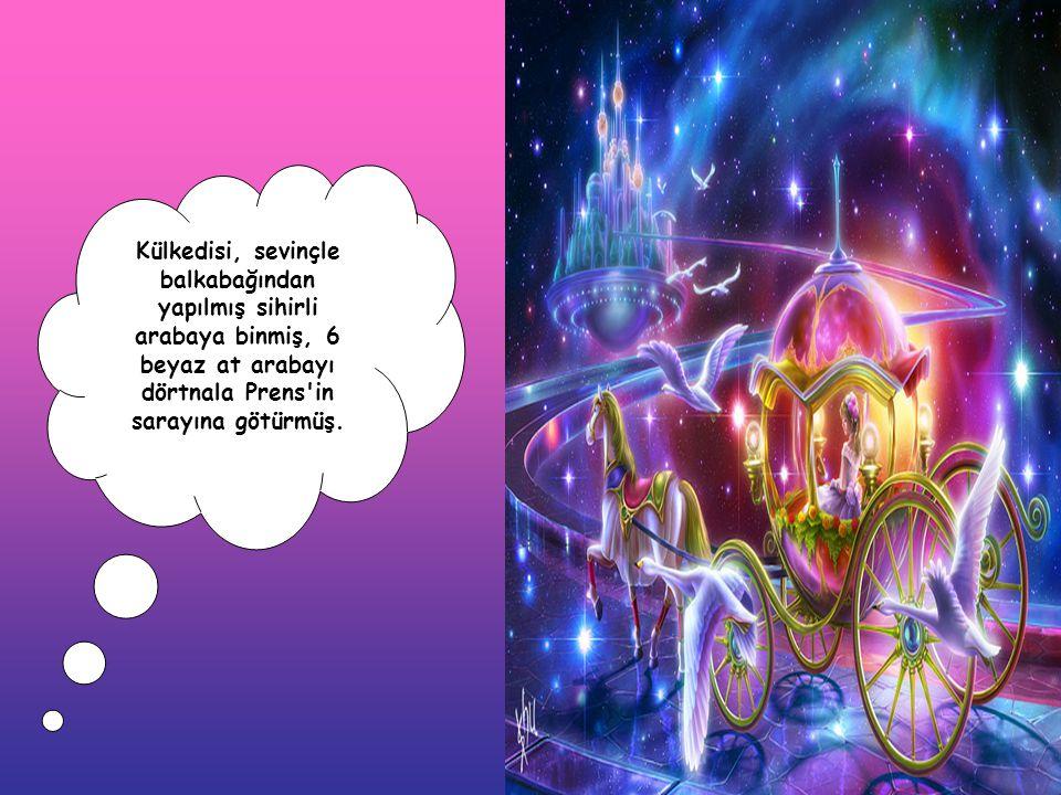 Külkedisi, sevinçle balkabağından yapılmış sihirli arabaya binmiş, 6 beyaz at arabayı dörtnala Prens in sarayına götürmüş.