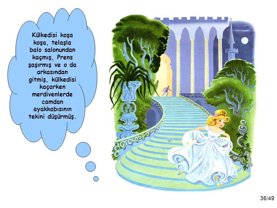 Külkedisi koşa koşa, telaşla balo salonundan kaçmış, Prens şaşırmış ve o da arkasından gitmiş, külkedisi kaçarken merdivenlerde camdan ayakkabısının tekini düşürmüş.