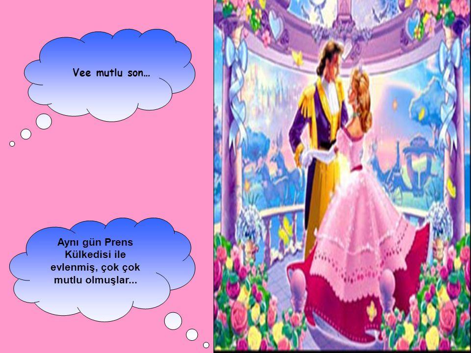 Aynı gün Prens Külkedisi ile evlenmiş, çok çok mutlu olmuşlar...