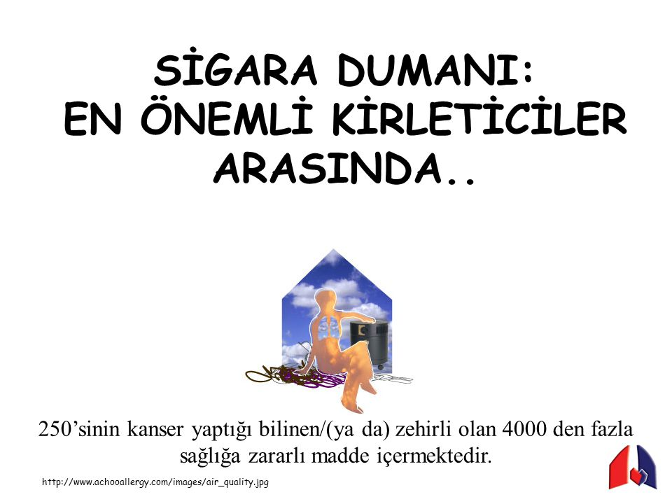 EN ÖNEMLİ KİRLETİCİLER ARASINDA..