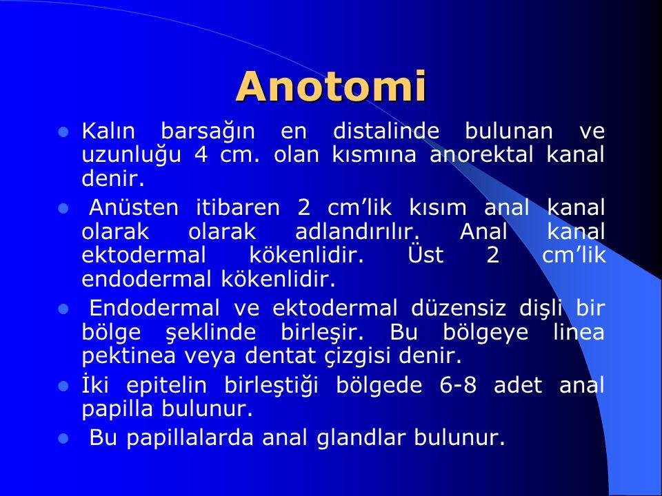 Anotomi Kalın barsağın en distalinde bulunan ve uzunluğu 4 cm. olan kısmına anorektal kanal denir.