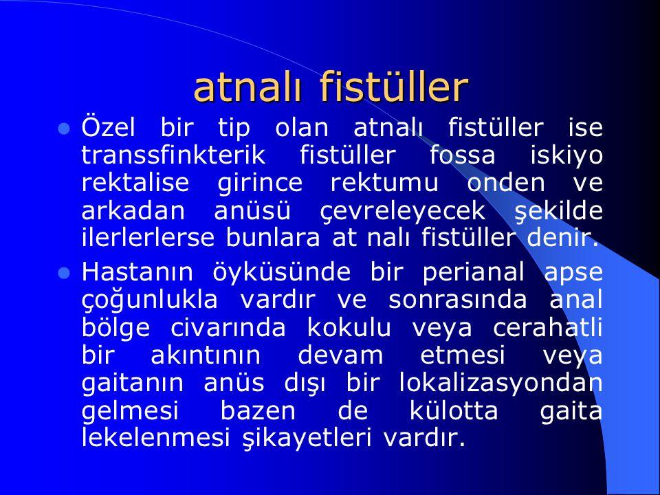 atnalı fistüller