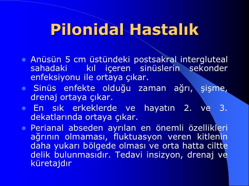 Pilonidal Hastalık Anüsün 5 cm üstündeki postsakral intergluteal sahadaki kıl içeren sinüslerin sekonder enfeksiyonu ile ortaya çıkar.