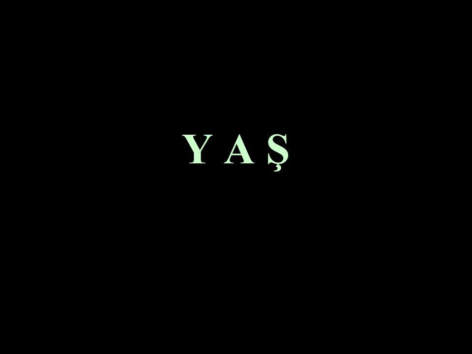 Y A Ş