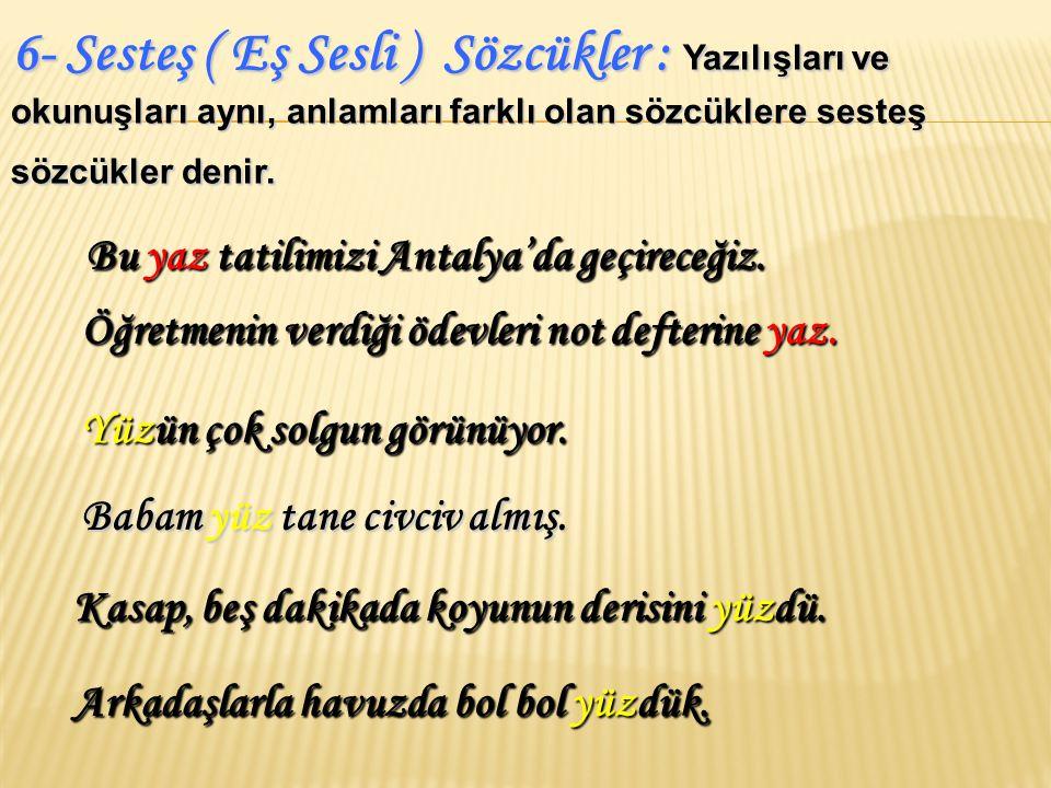 6- Sesteş ( Eş Sesli ) Sözcükler : Yazılışları ve okunuşları aynı, anlamları farklı olan sözcüklere sesteş sözcükler denir.
