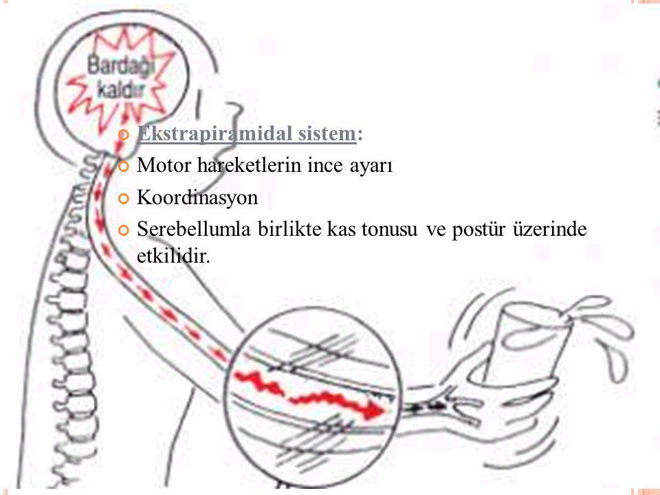 Ekstrapiramidal sistem:
