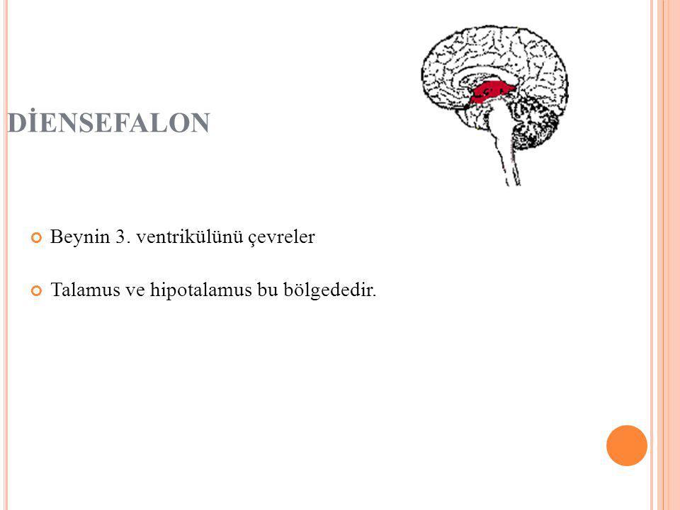 DİENSEFALON Beynin 3. ventrikülünü çevreler
