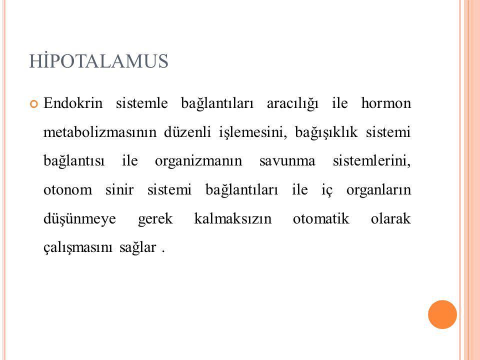 HİPOTALAMUS