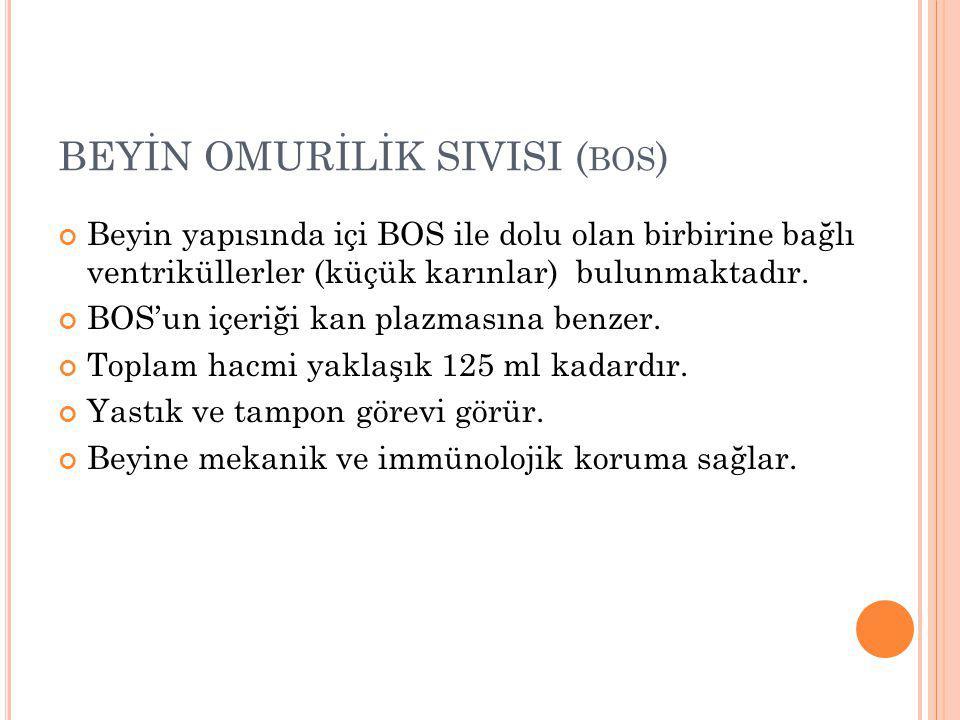 BEYİN OMURİLİK SIVISI (bos)
