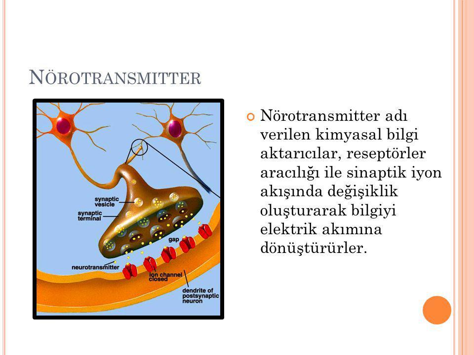 Nörotransmitter