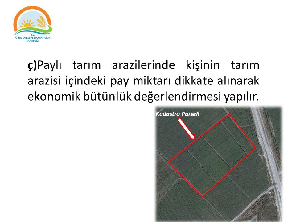 ç)Paylı tarım arazilerinde kişinin tarım arazisi içindeki pay miktarı dikkate alınarak ekonomik bütünlük değerlendirmesi yapılır.