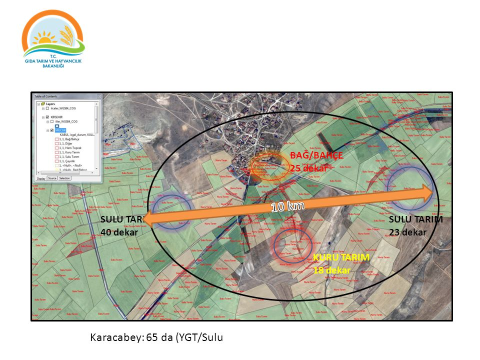 10 km Karacabey: 65 da (YGT/Sulu BAĞ/BAHÇE 25 dekar SULU TARIM