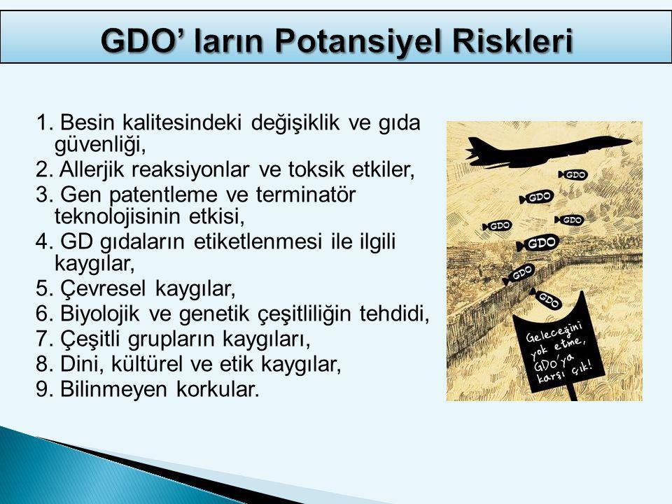 GDO' ların Potansiyel Riskleri