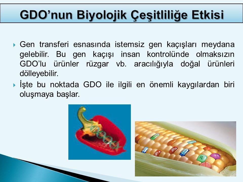 GDO'nun Biyolojik Çeşitliliğe Etkisi