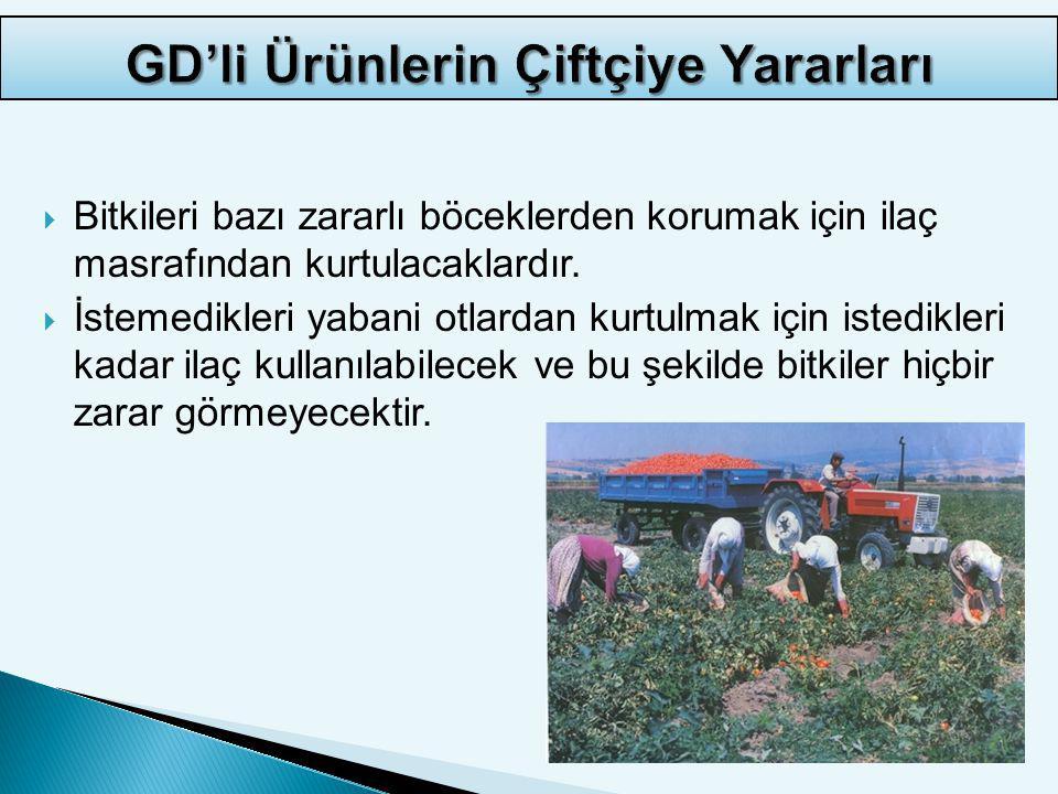 GD'li Ürünlerin Çiftçiye Yararları