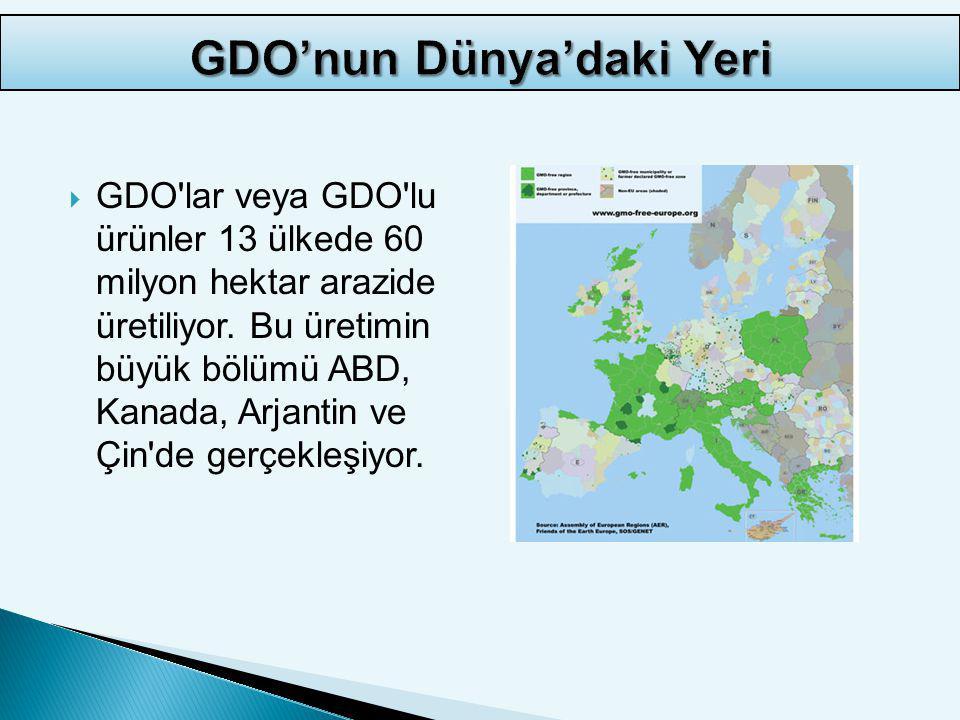 GDO'nun Dünya'daki Yeri