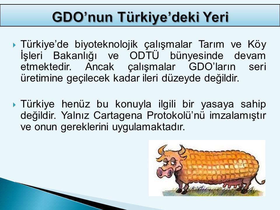 GDO'nun Türkiye'deki Yeri