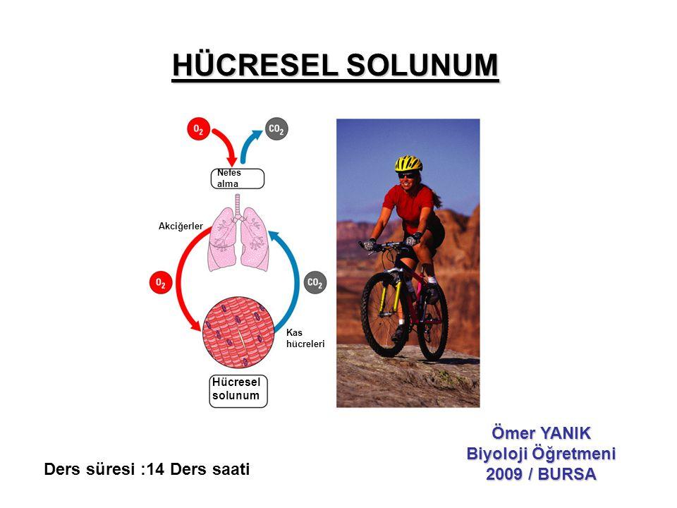 HÜCRESEL SOLUNUM Ömer YANIK Biyoloji Öğretmeni 2009 / BURSA