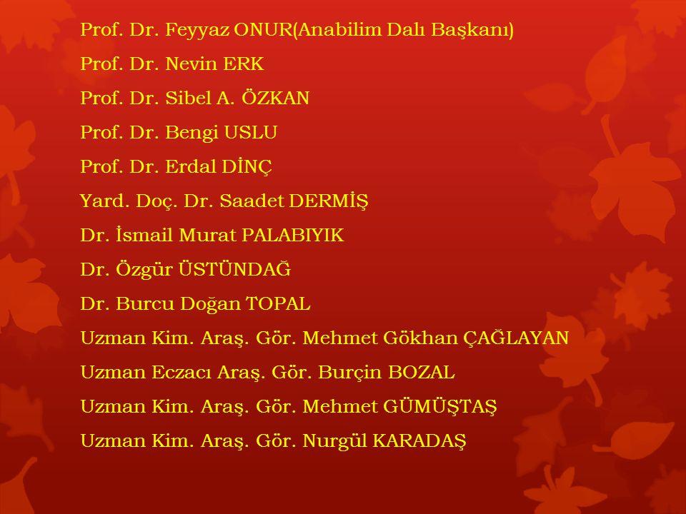 Prof. Dr. Feyyaz ONUR(Anabilim Dalı Başkanı)