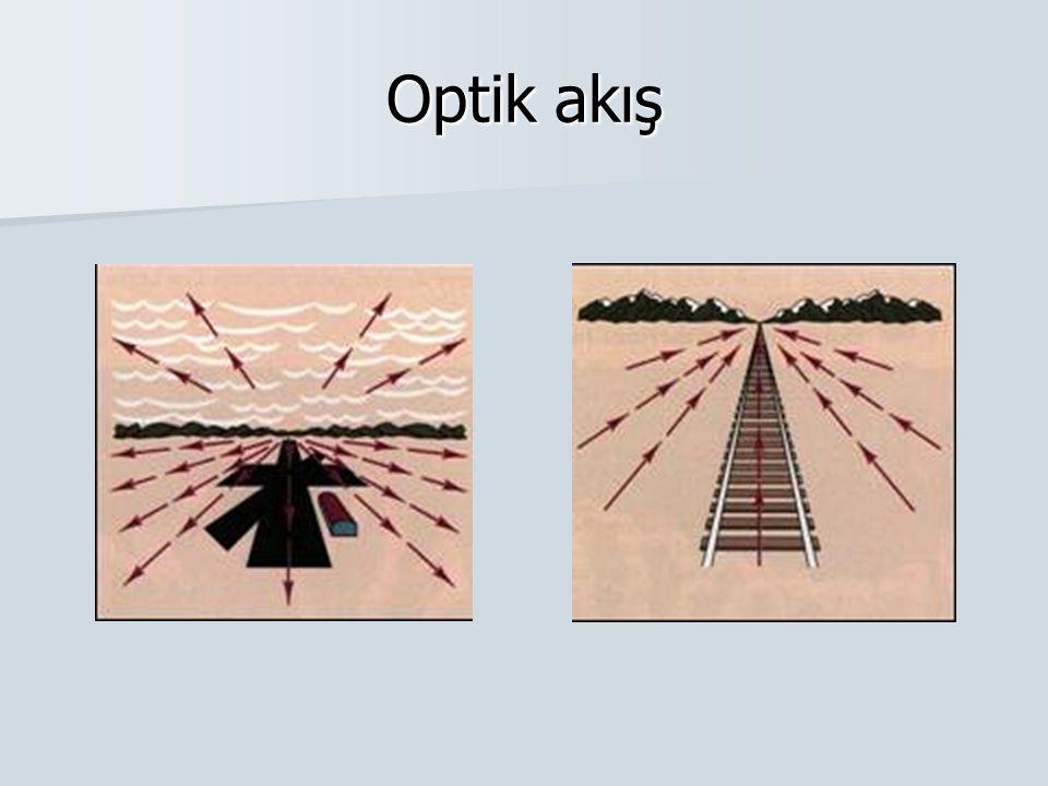 Optik akış
