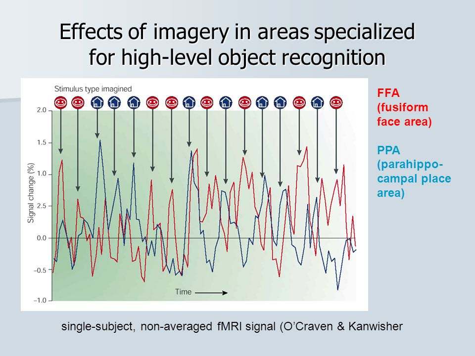 single-subject, non-averaged fMRI signal (O'Craven & Kanwisher